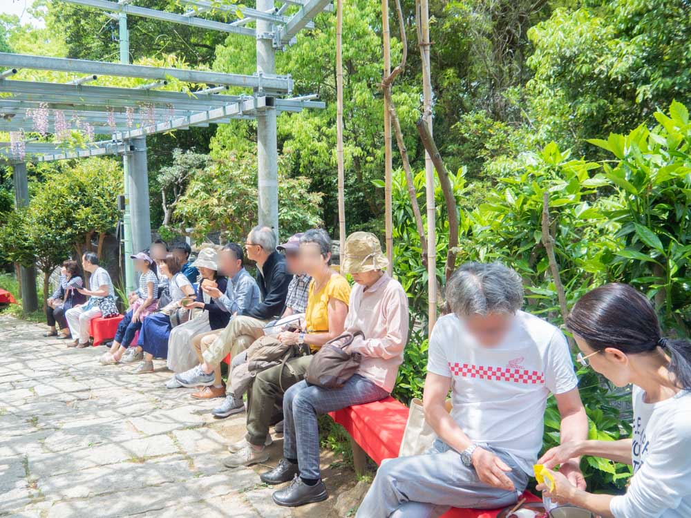 藤見の会(令和元年) 雅楽演奏と茶席を楽しむ観客