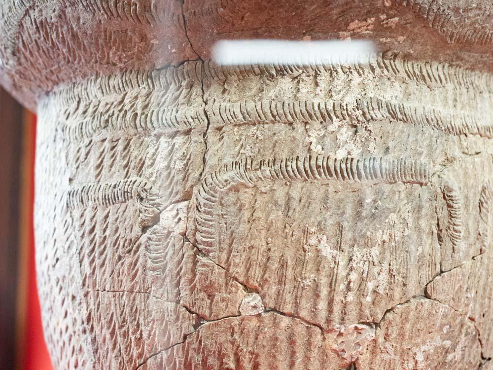 倉敷考古館:里木貝塚から出土した縄文土器