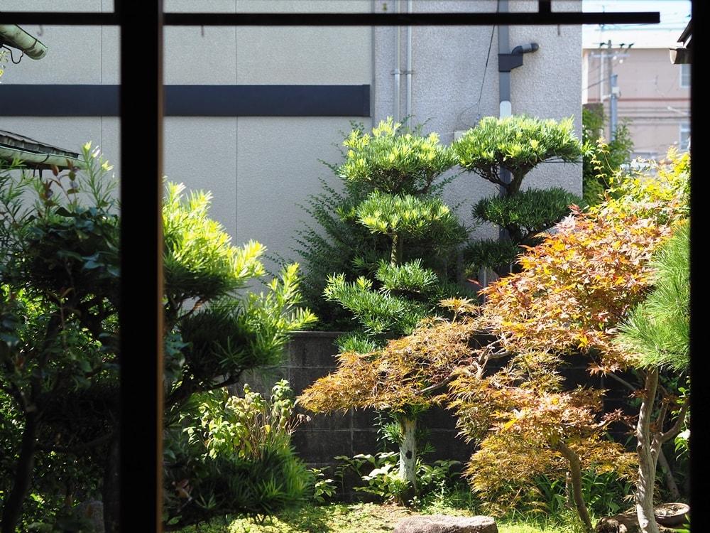 倉敷老松三丁目 cafe庭 庭園