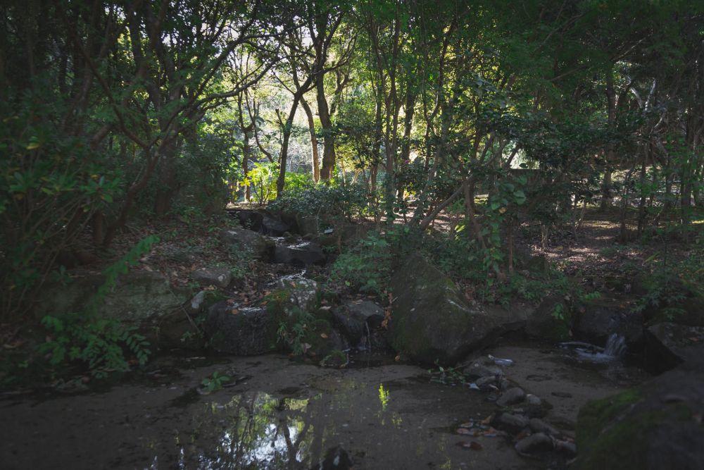まきび公園 流水