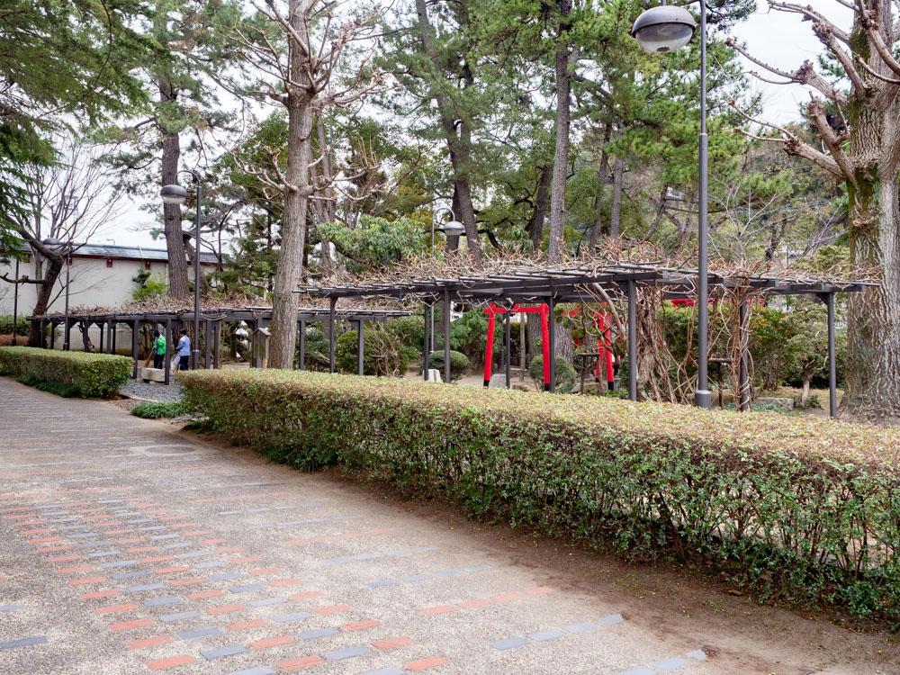 城山稲荷神社の藤棚