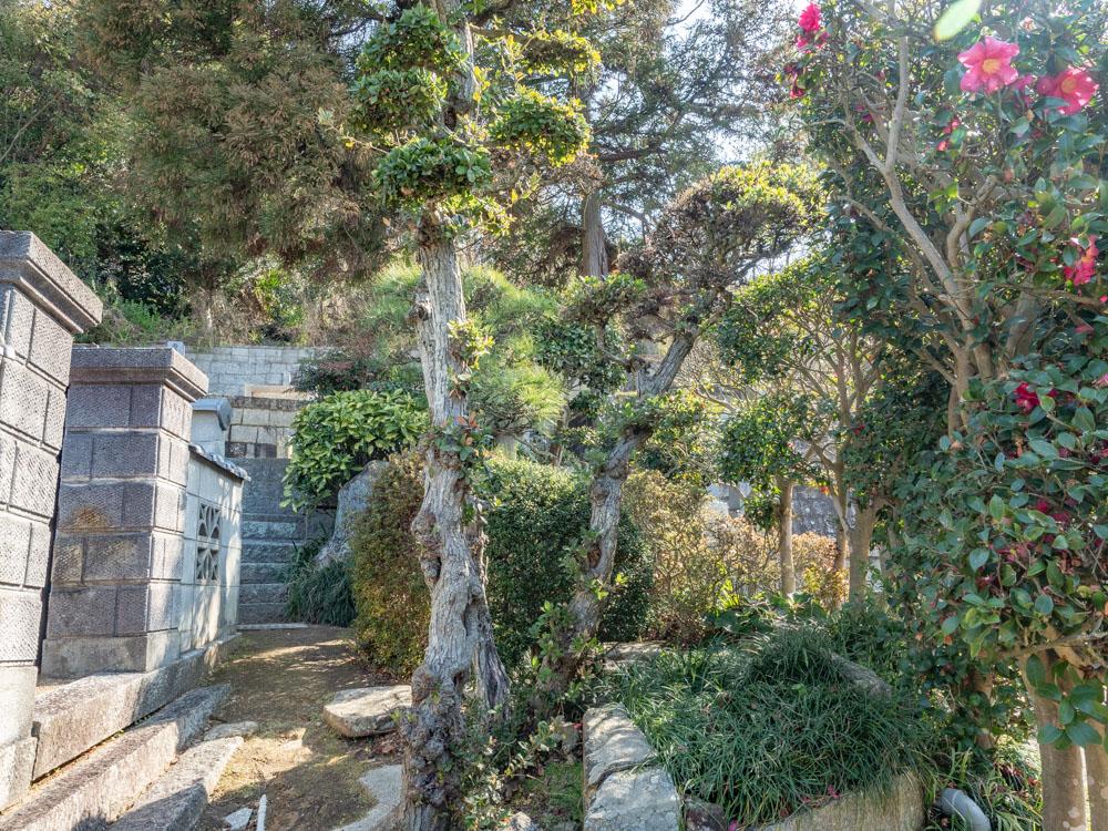教善寺:墓地入口から遠州井への道