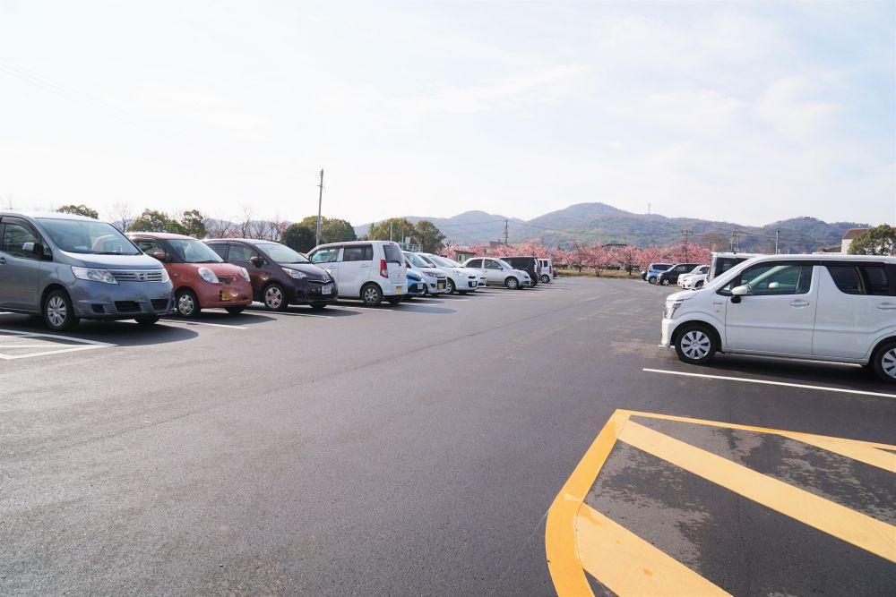 福原緑地の駐車場