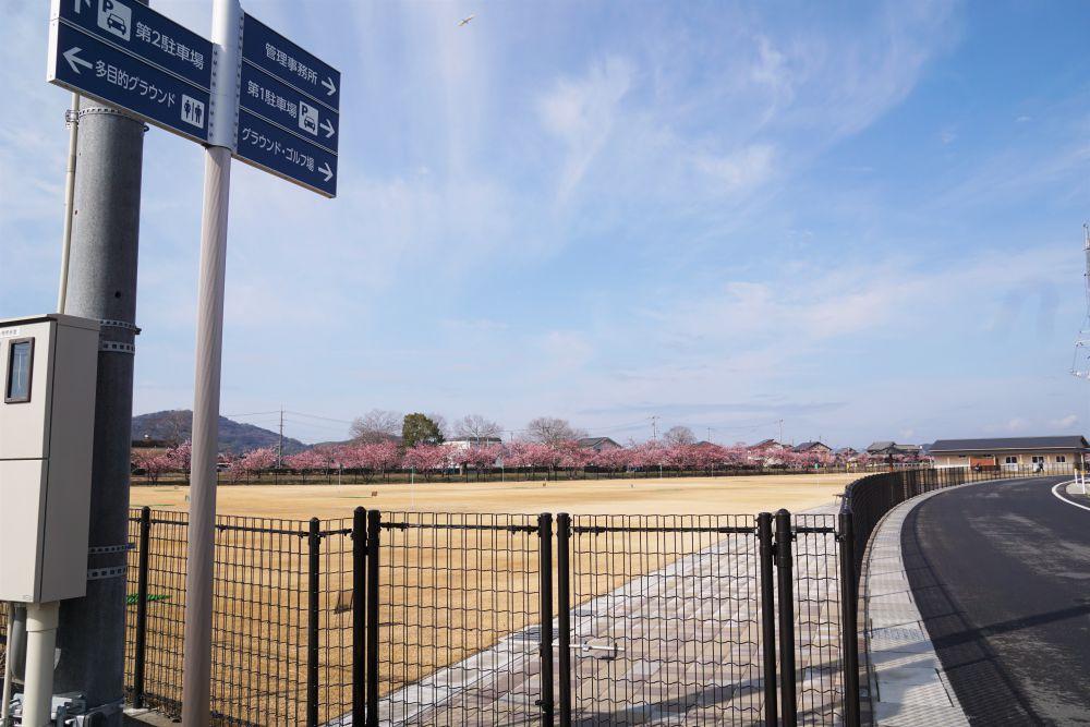 福原緑地公園の駐車場