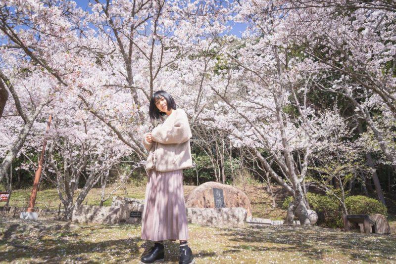 歴史ロマンあふれる町をゆっくり。桜舞う自然豊かな真備町を春さんぽ