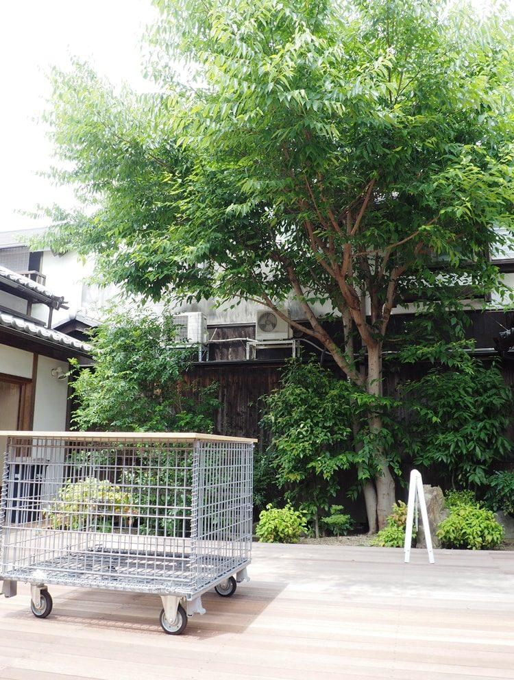 cafe2MUG 中庭